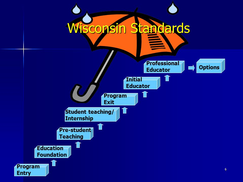 Wisconsin Standards Professional Educator Options Initial Educator