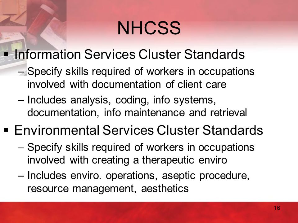 NHCSS Information Services Cluster Standards