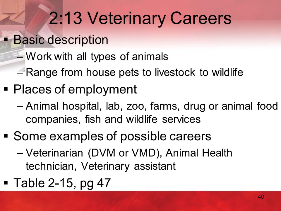 2:13 Veterinary Careers Basic description Places of employment