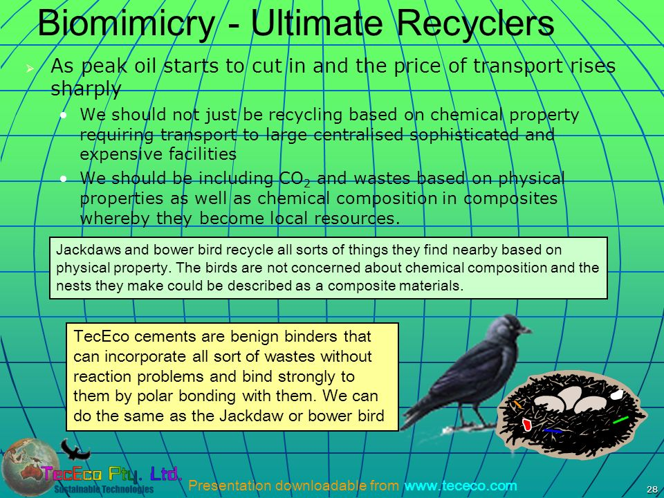 Biomimicry - Ultimate Recyclers
