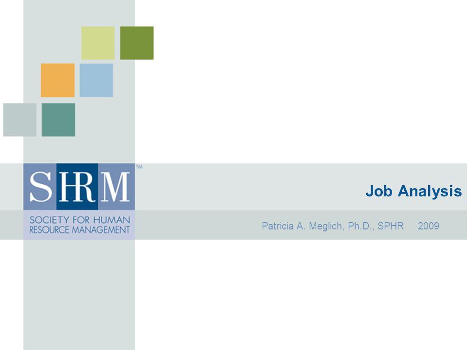 Patricia A. Meglich, Ph.D., SPHR 2009