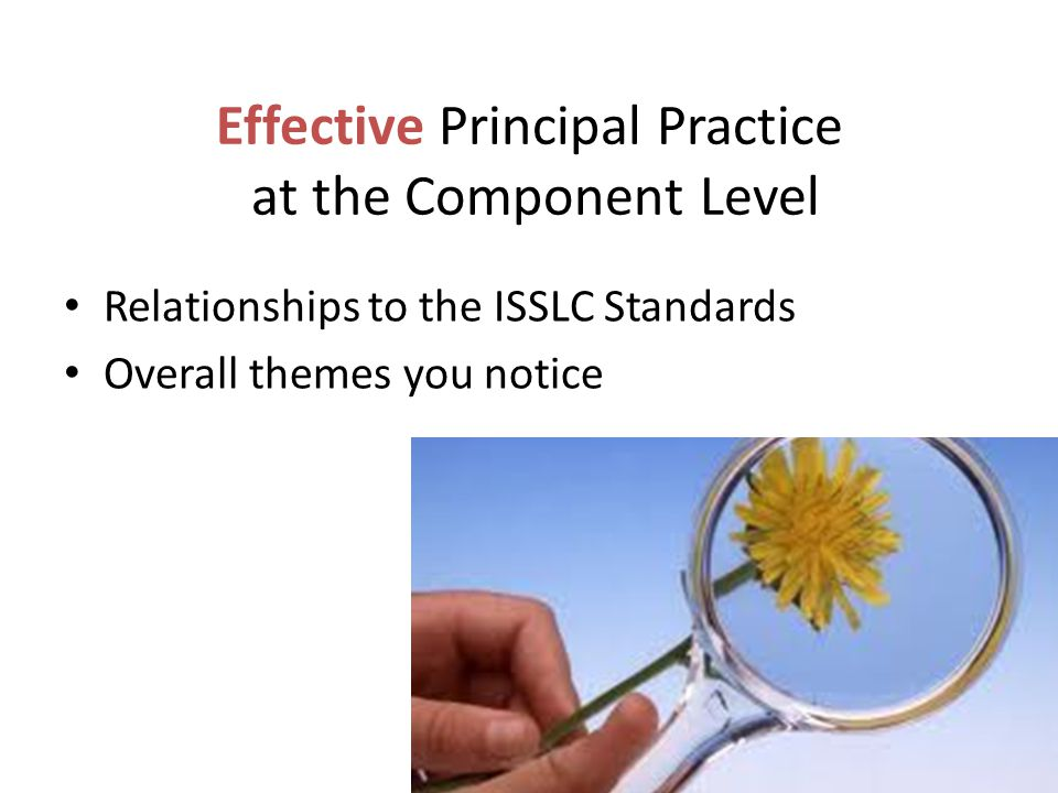 Effective Principal Practice at the Component Level