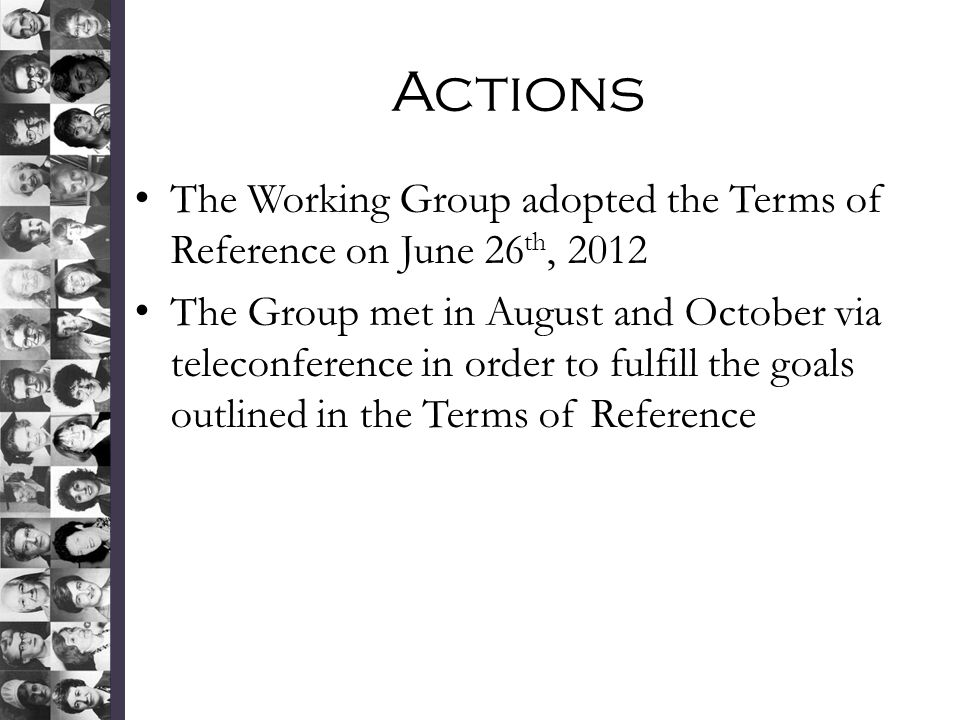 Actions The Working Group adopted the Terms of Reference on June 26th, 2012.