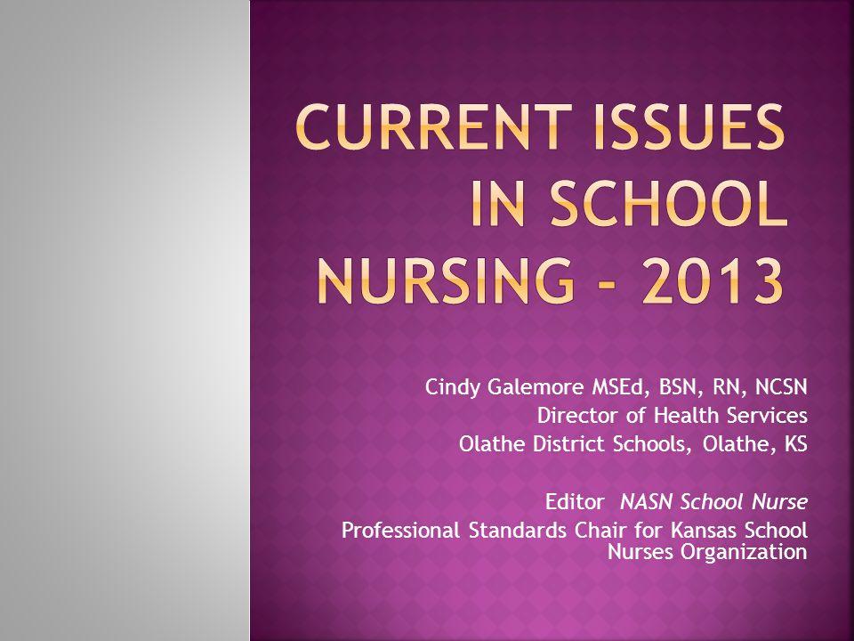 Current Issues in School Nursing - 2013