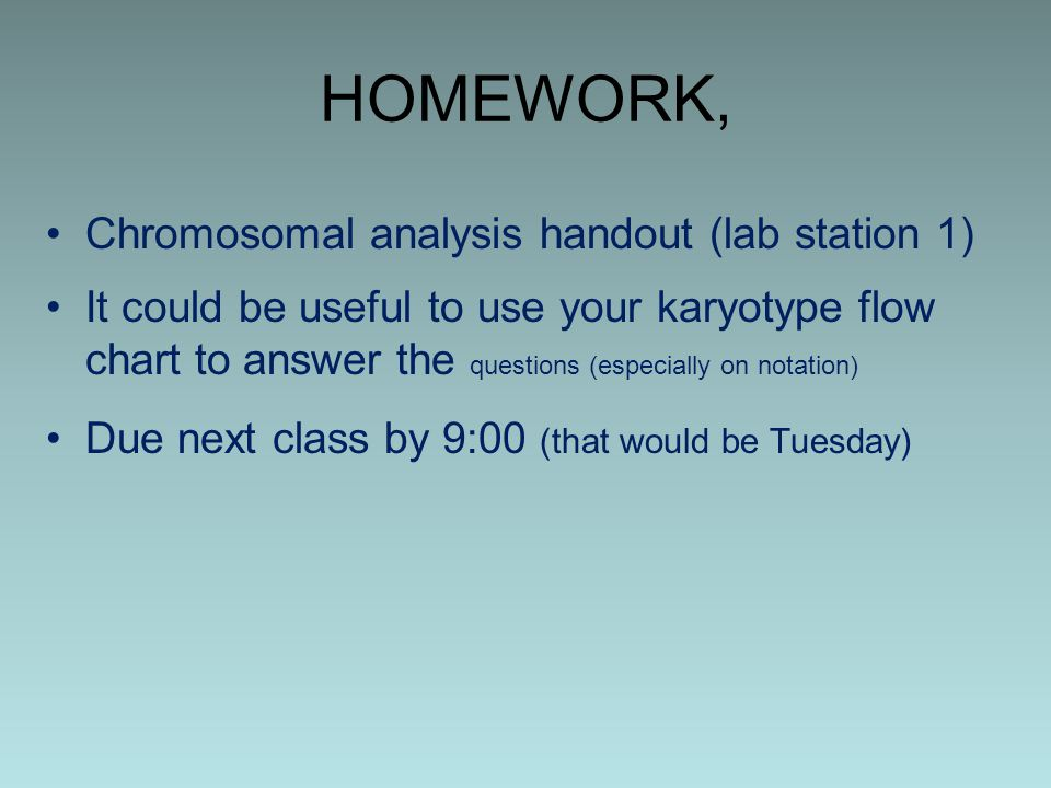 HOMEWORK, Chromosomal analysis handout (lab station 1)