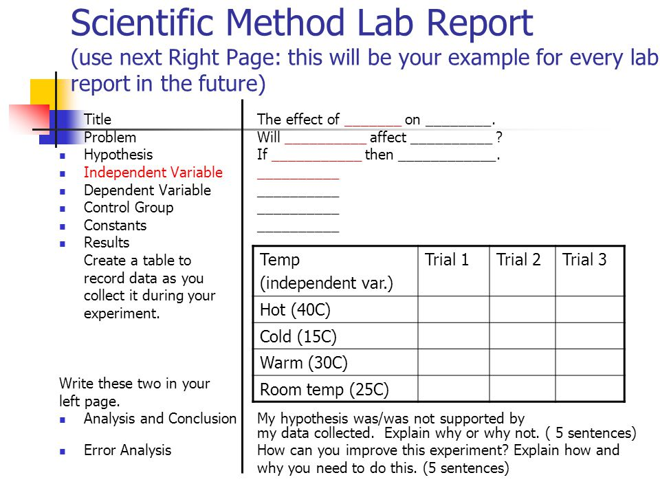 lab report hypothesis example