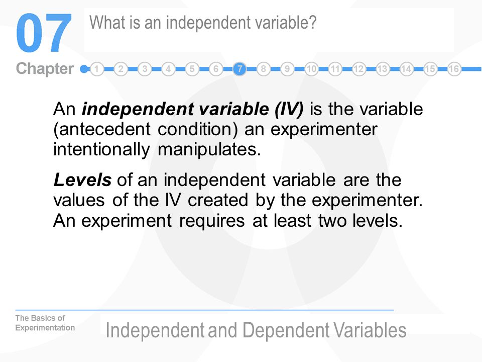 What is an independent variable