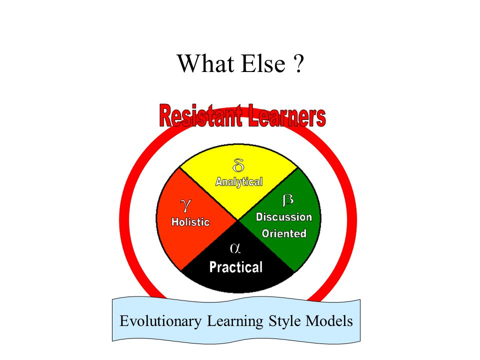 Evolutionary Learning Style Models
