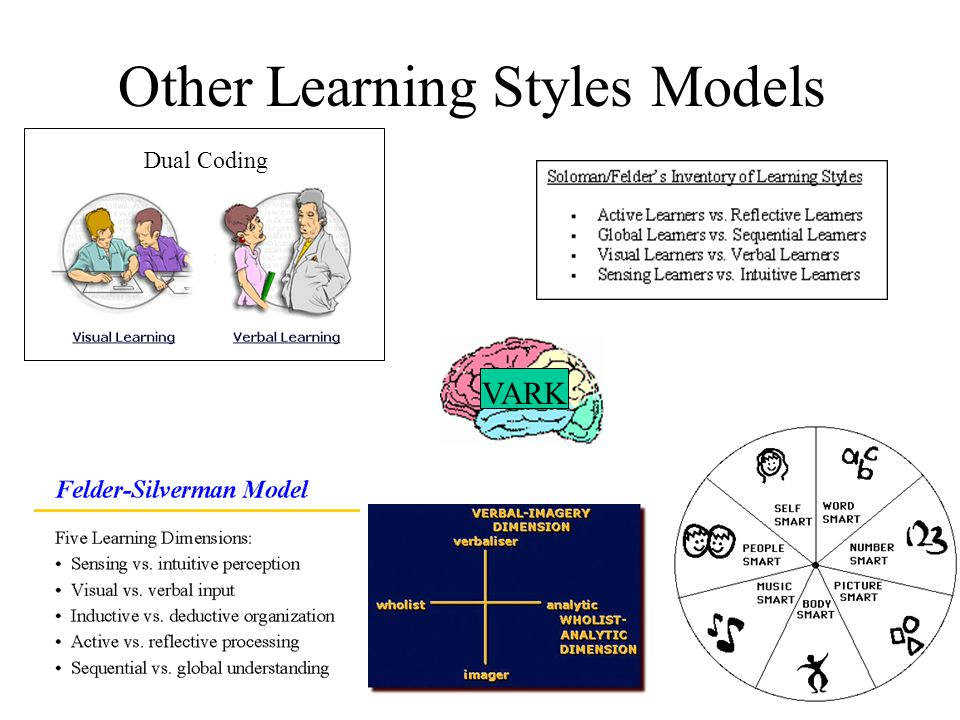 Other Learning Styles Models