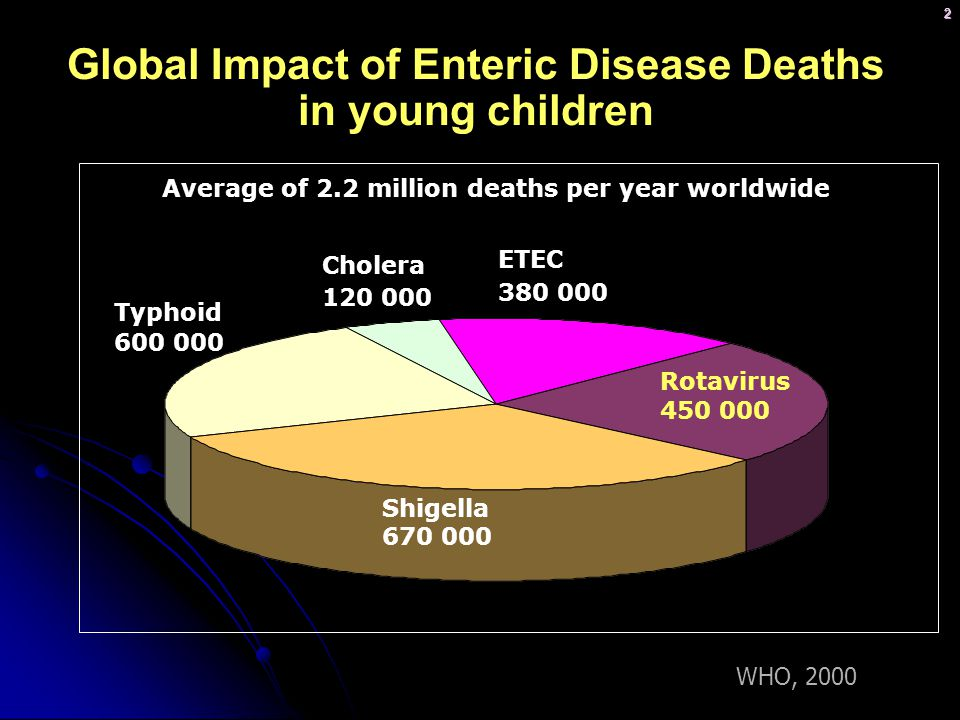 Global Impact of Enteric Disease Deaths in young children