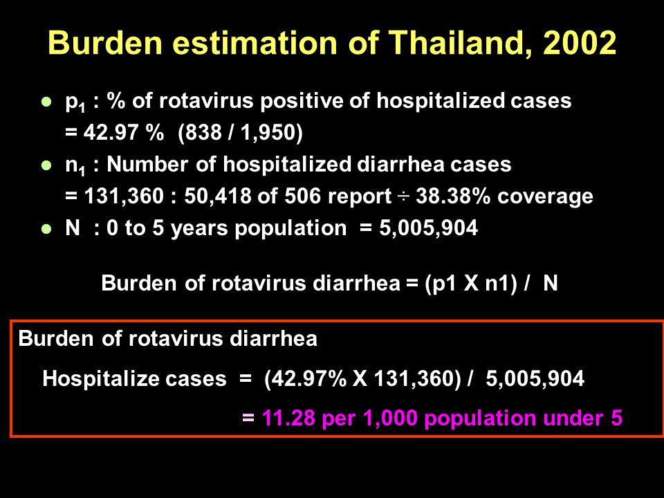 Burden estimation of Thailand, 2002
