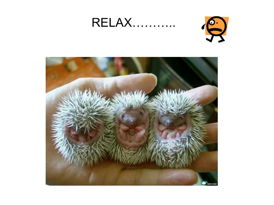 RELAX………..