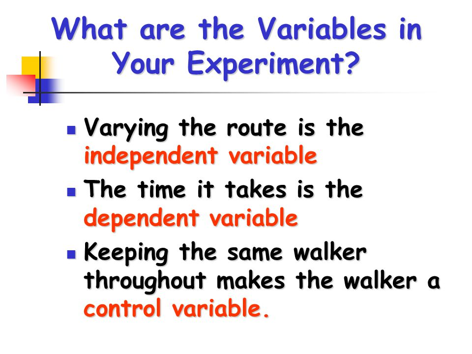 What are the Variables in Your Experiment