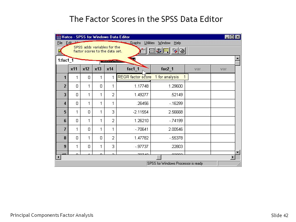 The Factor Scores in the SPSS Data Editor
