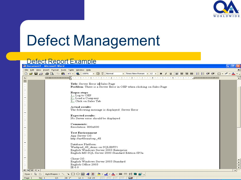 Defect Management Defect Report Example
