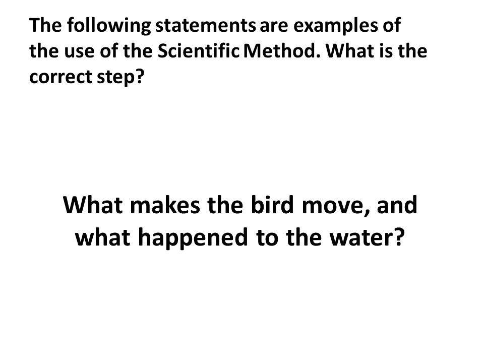 What makes the bird move, and what happened to the water