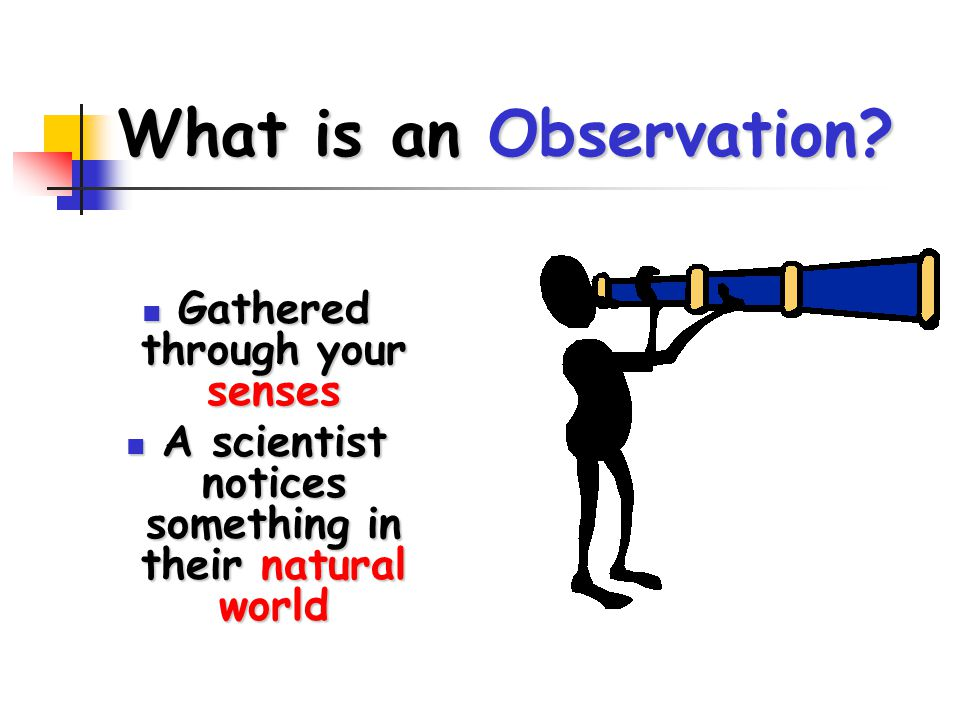 What is an Observation Gathered through your senses