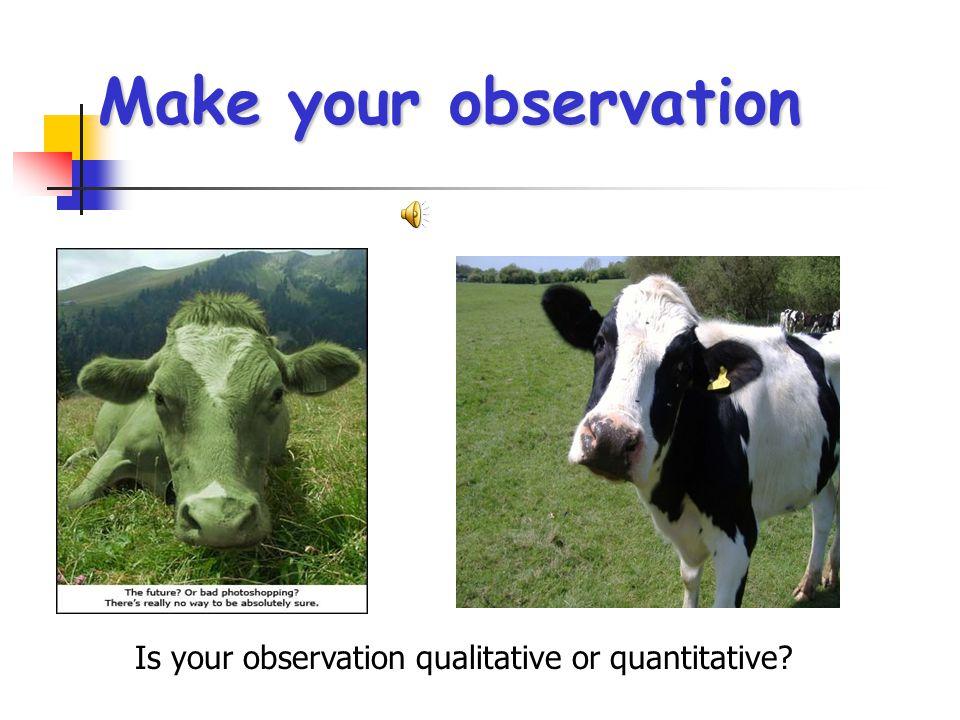 Is your observation qualitative or quantitative