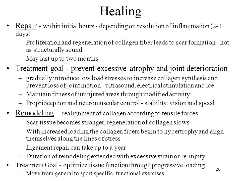 Healing Repair - within initial hours - depending on resolution of inflammation (2-3 days)