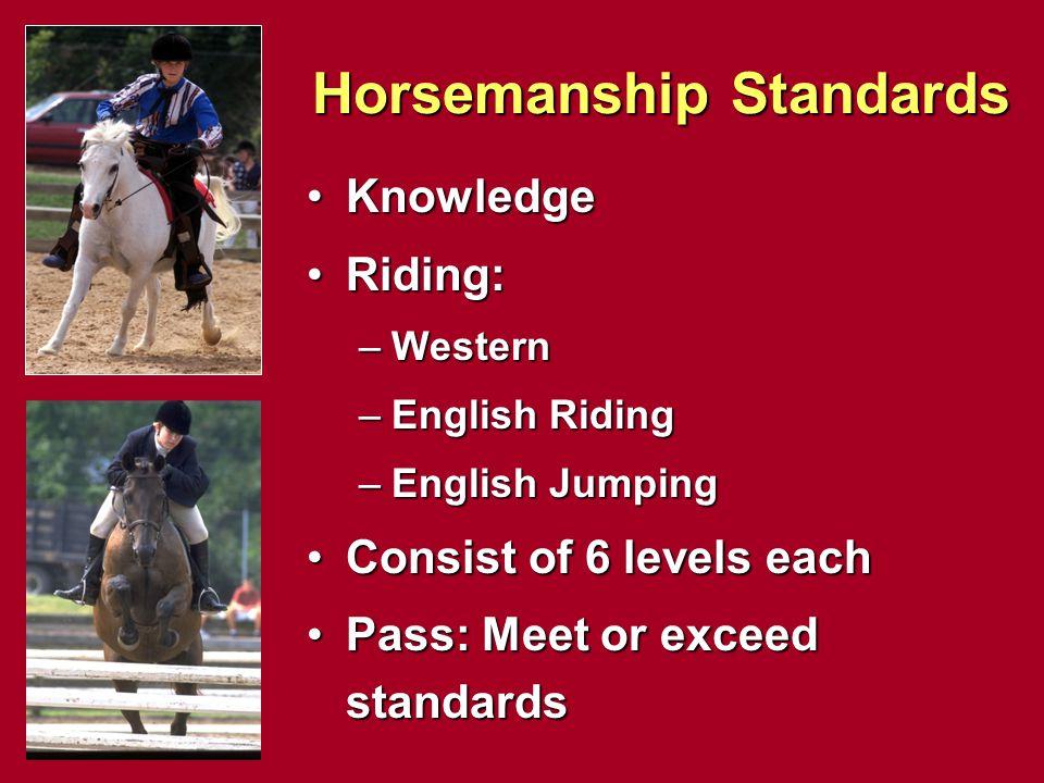 Horsemanship Standards