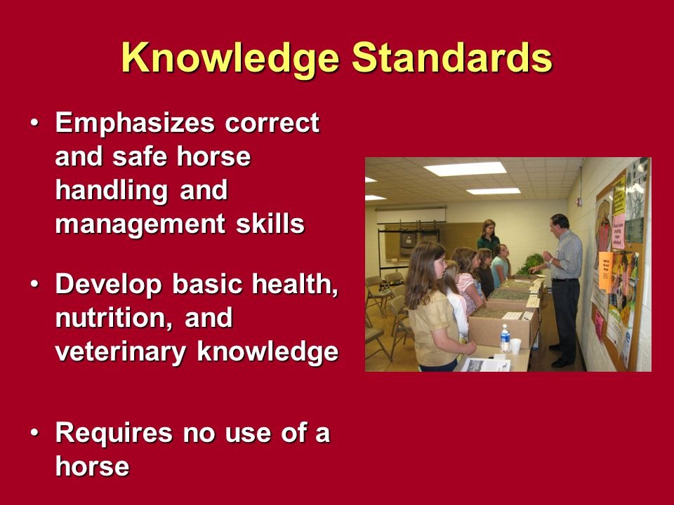 Knowledge Standards Emphasizes correct and safe horse handling and management skills. Develop basic health, nutrition, and veterinary knowledge.