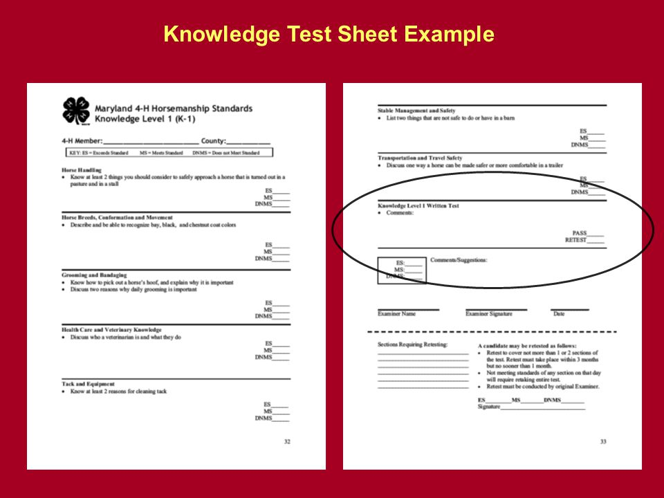 Knowledge Test Sheet Example