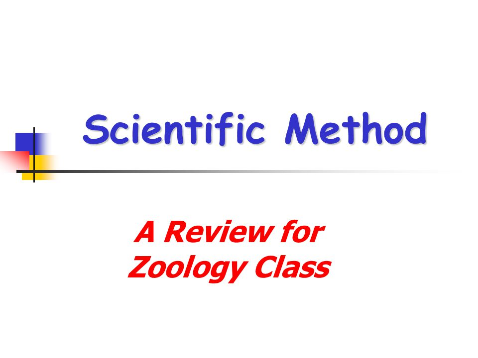 A Review for Zoology Class