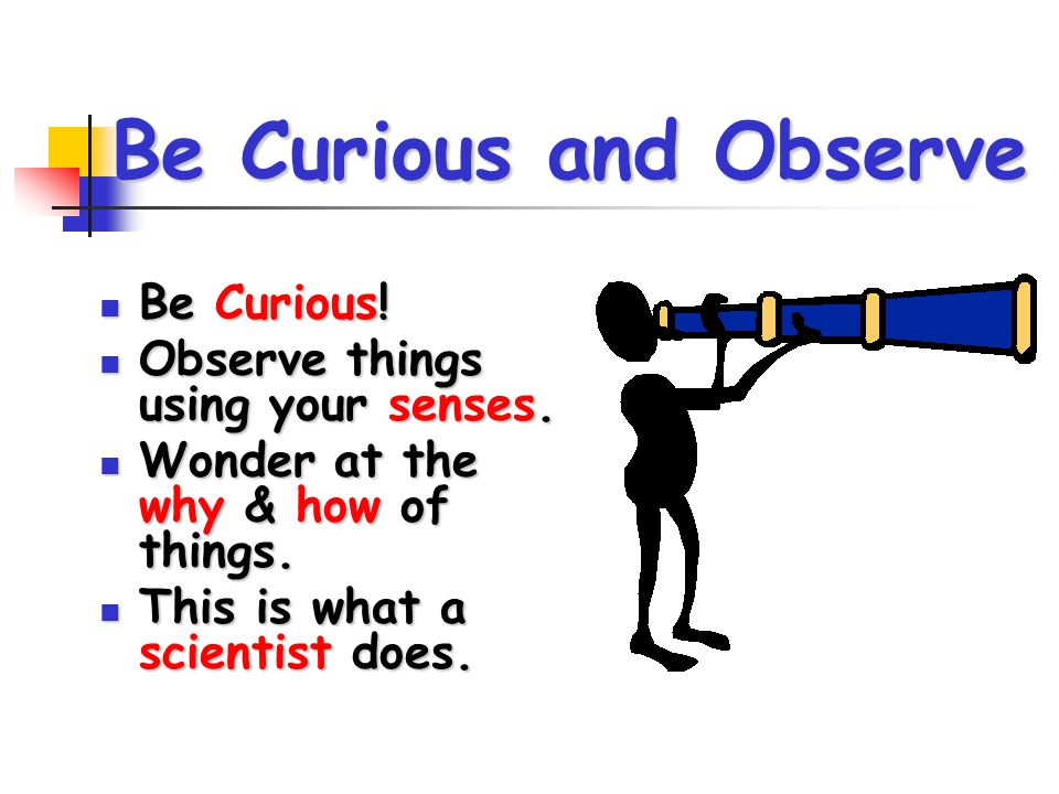 Be Curious and Observe Be Curious! Observe things using your senses.