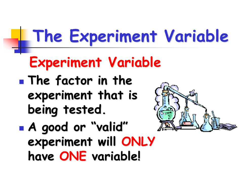The Experiment Variable