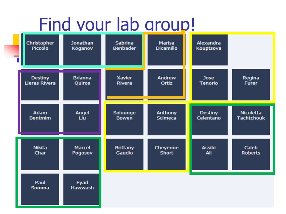 Find your lab group!