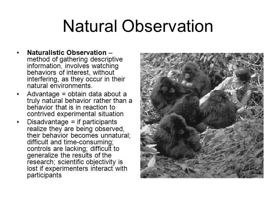 Natural Observation