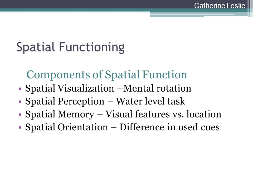 Spatial Functioning Components of Spatial Function