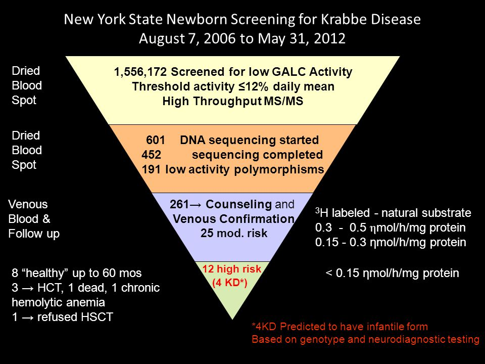 New York State Newborn Screening for Krabbe Disease August 7, 2006 to May 31, 2012