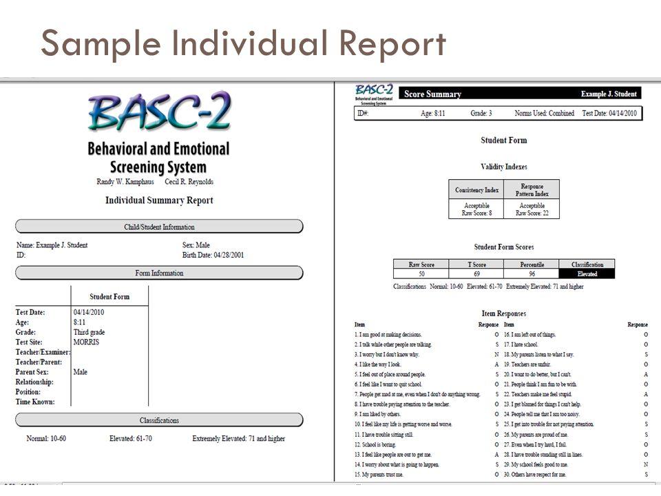 Sample Individual Report