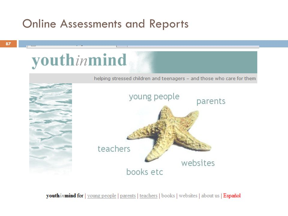 Online Assessments and Reports