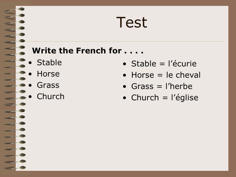 Test Write the French for . . . . Stable Stable = l'écurie Horse