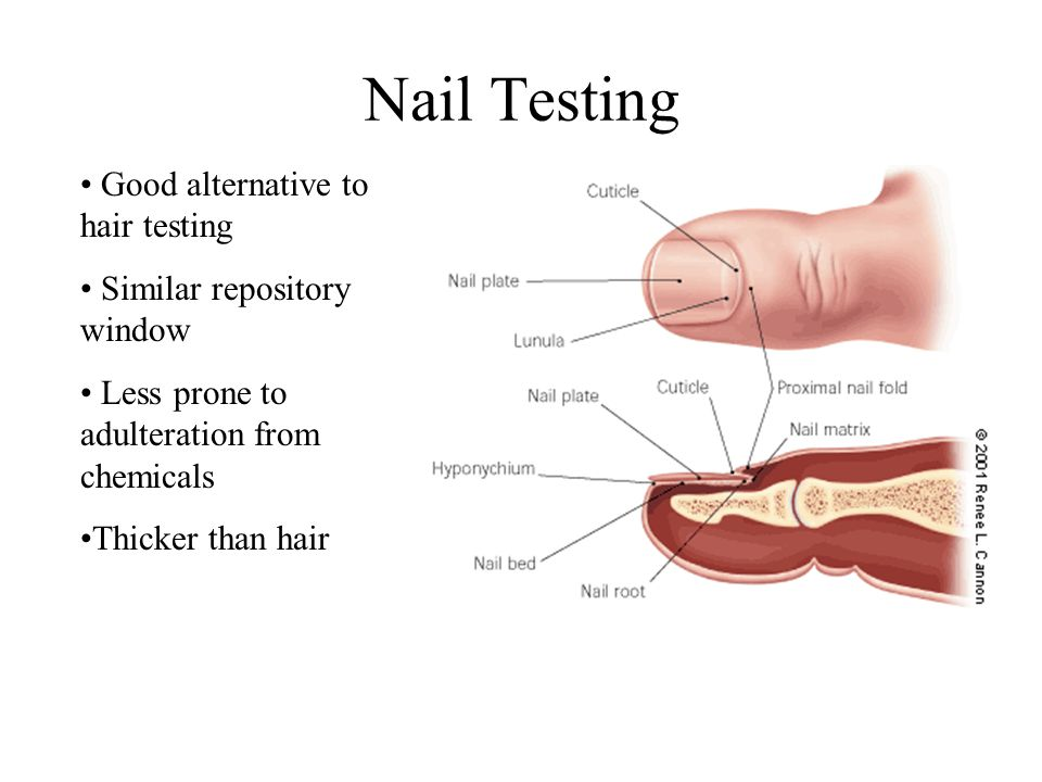Nail Testing Good alternative to hair testing