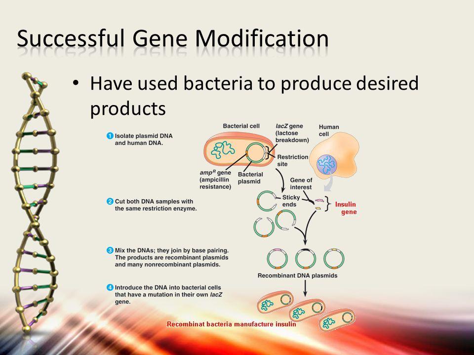 Successful Gene Modification