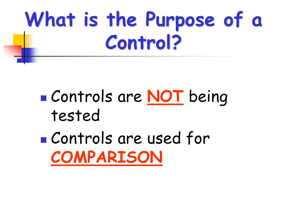 What is the Purpose of a Control