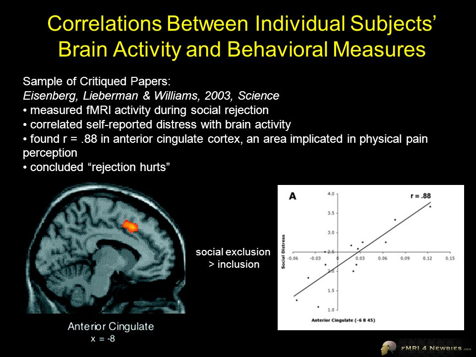 Correlations Between Individual Subjects' Brain Activity and Behavioral Measures