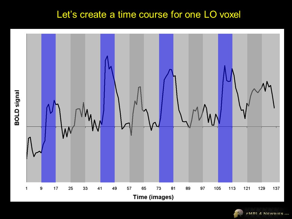 Let's create a time course for one LO voxel