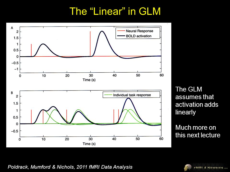 The Linear in GLM The GLM assumes that activation adds linearly
