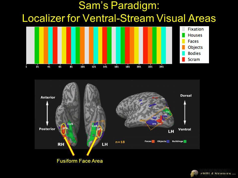 Sam's Paradigm: Localizer for Ventral-Stream Visual Areas