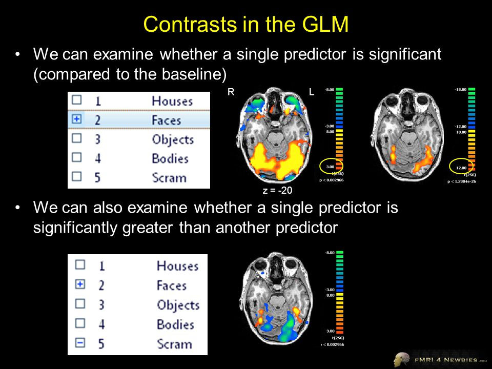 Contrasts in the GLM We can examine whether a single predictor is significant (compared to the baseline)