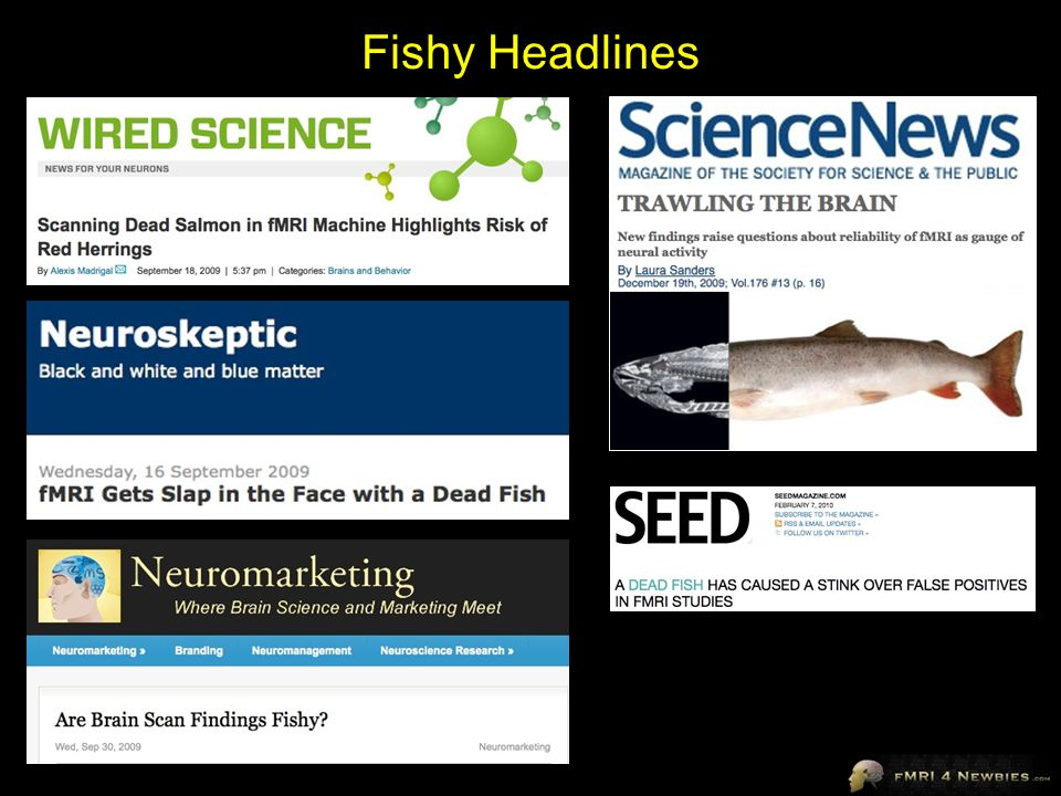 Fishy Headlines