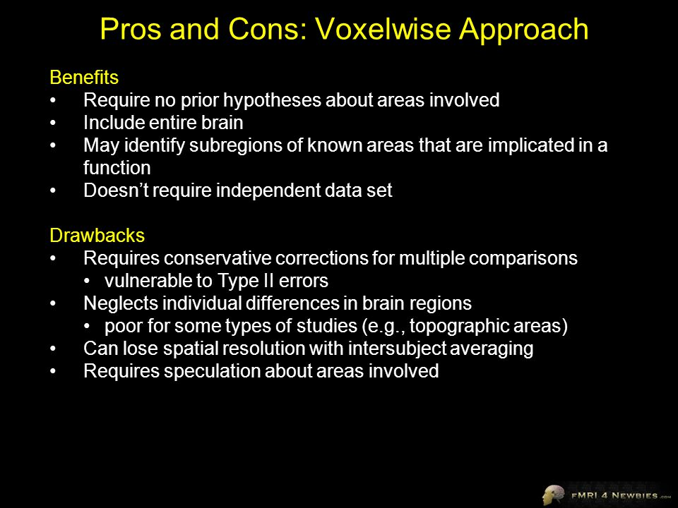 Pros and Cons: Voxelwise Approach