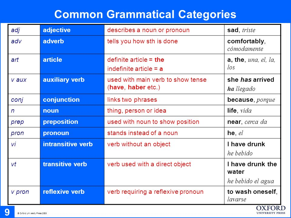 Common Grammatical Categories