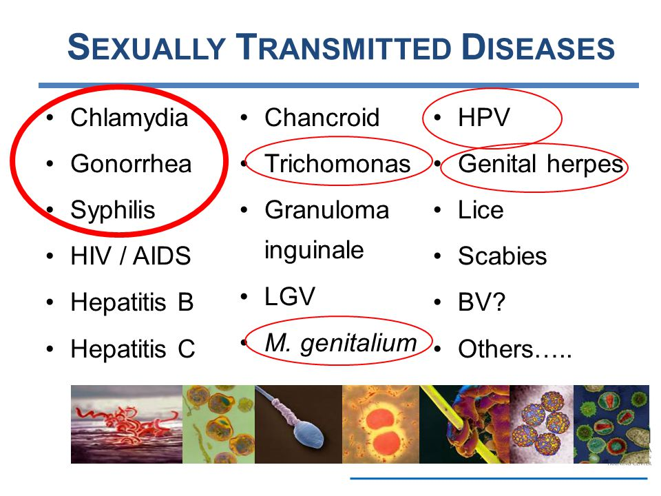 Transmission hepatitis c and sexual