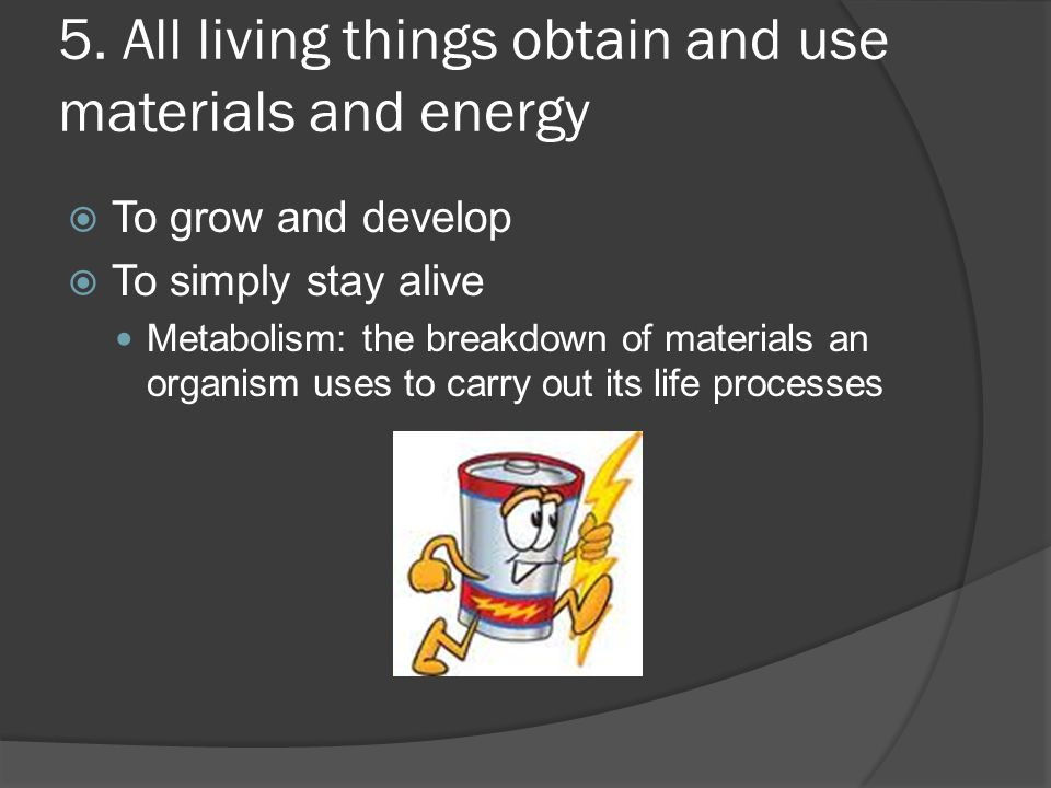 5. All living things obtain and use materials and energy