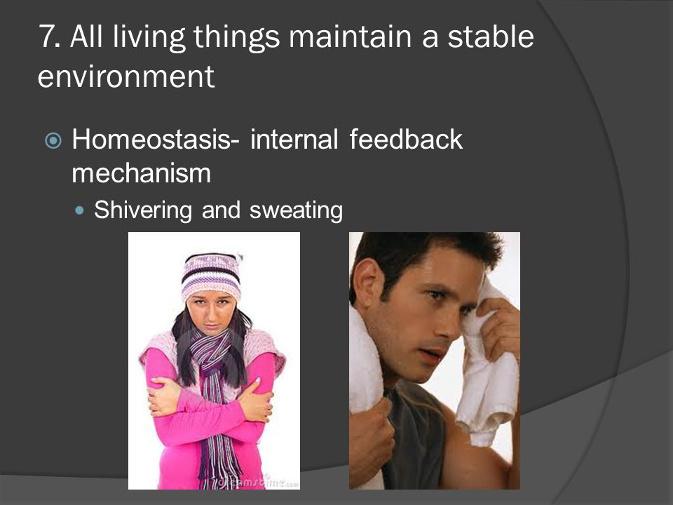 7. All living things maintain a stable environment